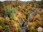 Doe River Gorge |
