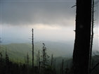 Clingmans Dome |