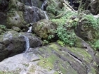 Roaring Fork Motor Nature Trail | Place of a Thousand Drips