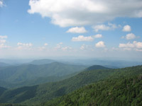Roan Mountain High Bluff